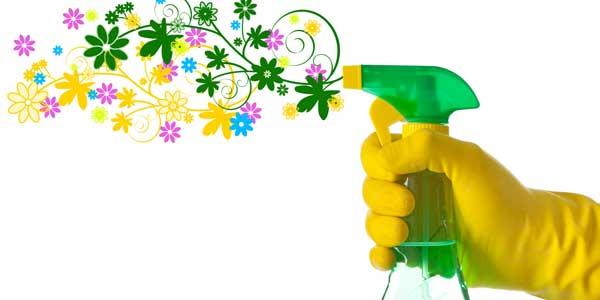 pulizie ecologiche